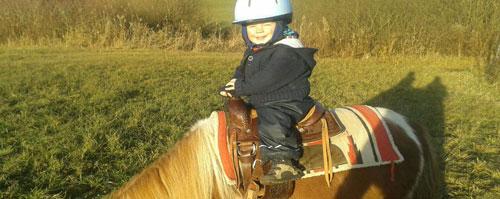 Pony zum Spazieren gehen